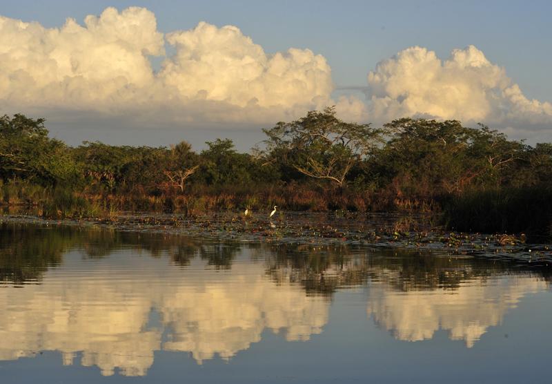 lamanai-river